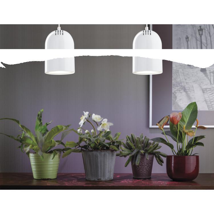 Paulmann LED R63 plantenlicht 4,5W E27 230V