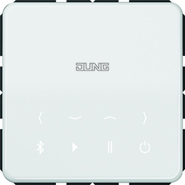 Bluetooth Connect module CD alpinwit