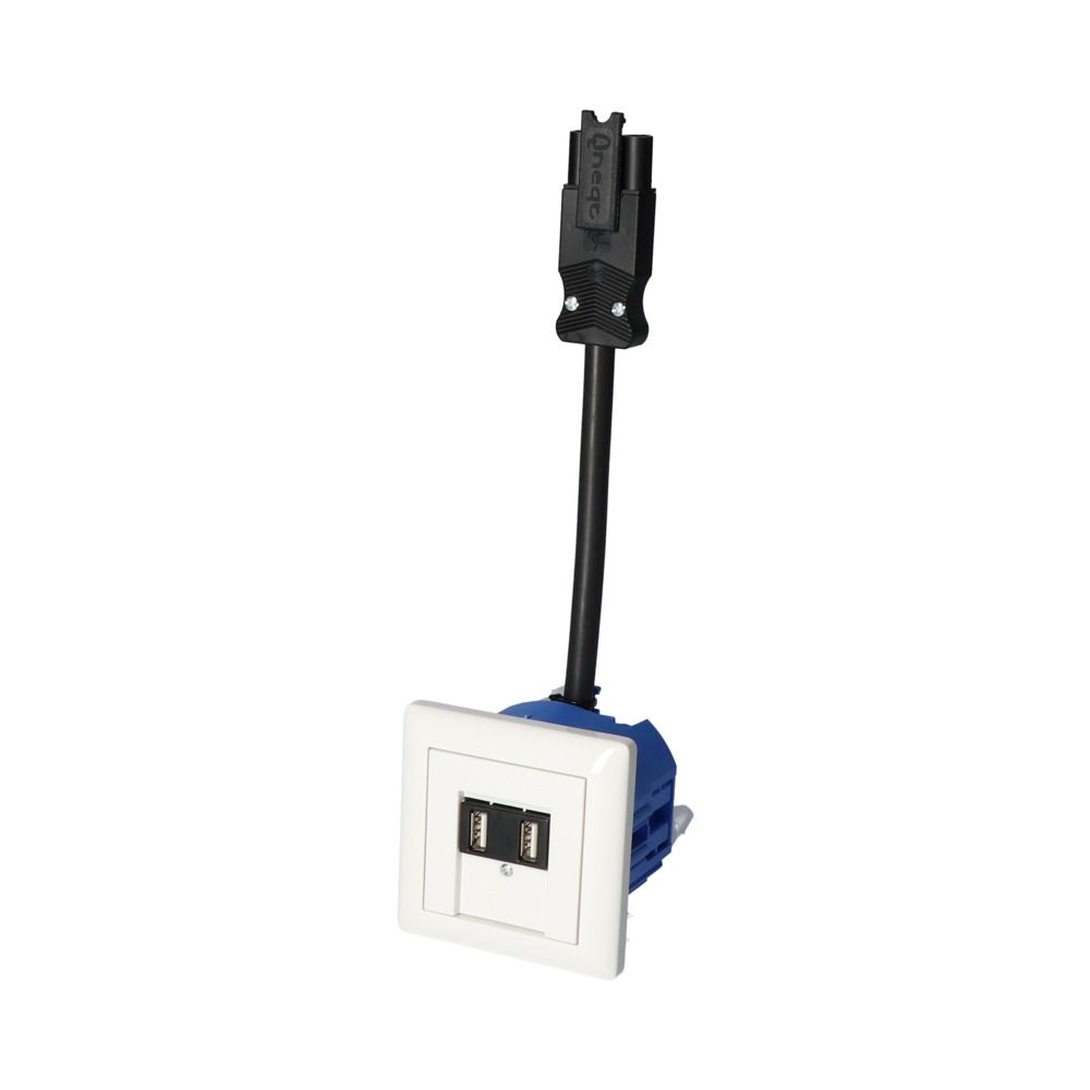 GIRA Standaard 55 Wit Glanzend – 2 USB WCD